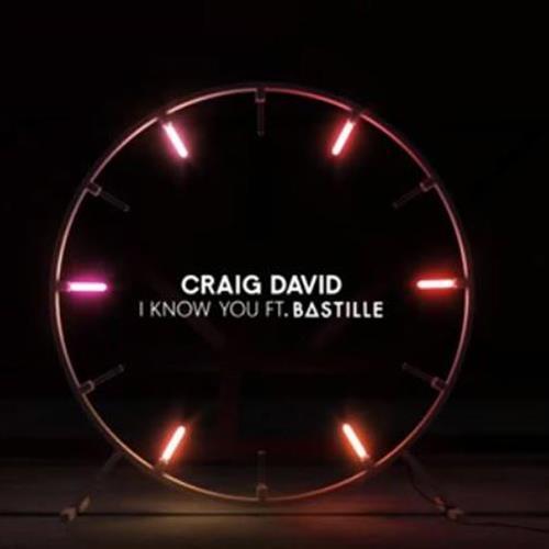 Craig David, I Know You (feat. Bastille), Keyboard
