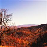 Alfred Bryan There's A Blue Ridge Round My Heart Virginia Sheet Music and PDF music score - SKU 117877