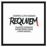 Andrew Lloyd Webber Pie Jesu (from Requiem) Sheet Music and PDF music score - SKU 13841