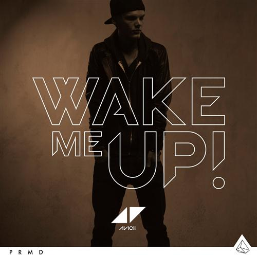 Avicii, Wake Me Up, Lyrics & Chords