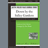 Ben Bram Down By The Salley Gardens Sheet Music and PDF music score - SKU 431035