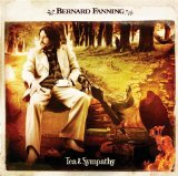 Bernard Fanning Wish You Well Sheet Music and PDF music score - SKU 118261