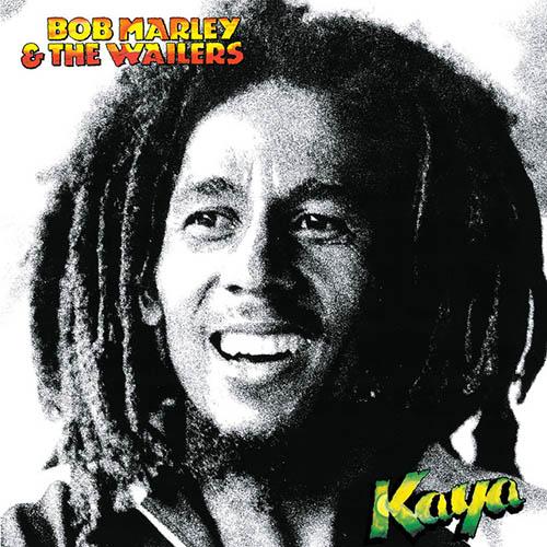 Bob Marley Easy Skanking profile image