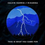 Calvin Harris featuring Rihanna This Is What You Came For Sheet Music and PDF music score - SKU 171360