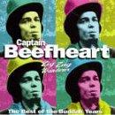 Captain Beefheart, I'm Glad, Lyrics & Chords