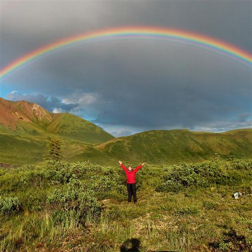 Henry Carroll I'm Always Chasing Rainbows profile image