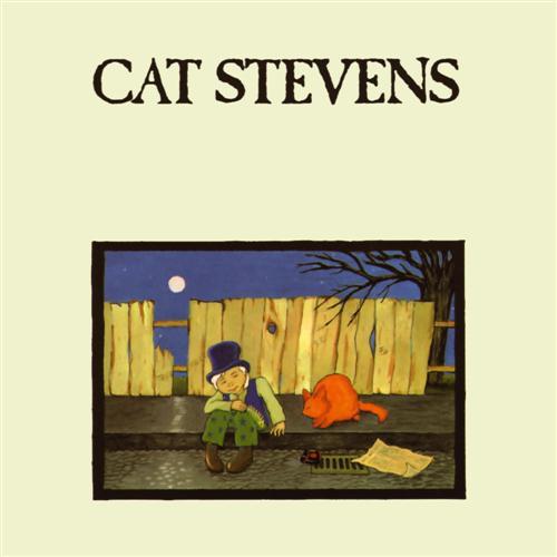 Cat Stevens Moonshadow profile image
