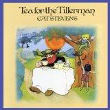 Cat Stevens Wild World Sheet Music and PDF music score - SKU 44438