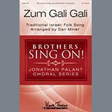 Dan Miner Zum Gali Gali Sheet Music and PDF music score - SKU 410399