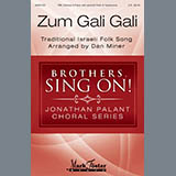 Dan Miner Zum Gali Gali Sheet Music and PDF music score - SKU 410399