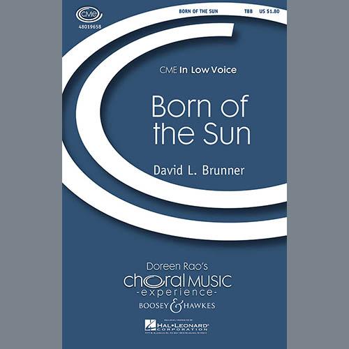 David Brunner Born Of The Sun profile image
