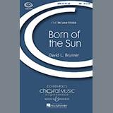David Brunner Born Of The Sun Sheet Music and PDF music score - SKU 69708