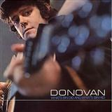Donovan Catch The Wind Sheet Music and PDF music score - SKU 403528