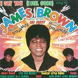 James Brown I Got You (I Feel Good) Sheet Music and PDF music score - SKU 253816