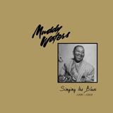Muddy Waters She's Into Somethin' Sheet Music and PDF music score - SKU 403847