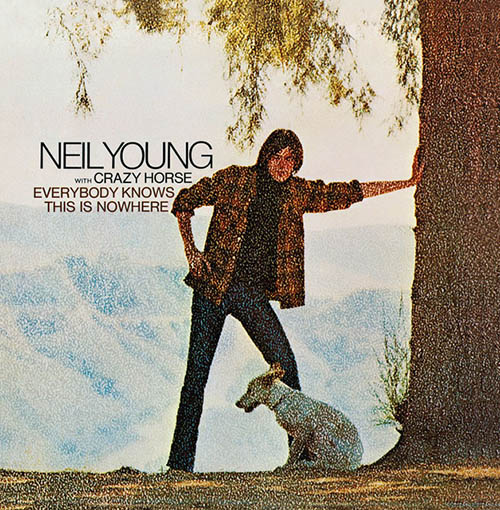 Neil Young Down By The River profile image