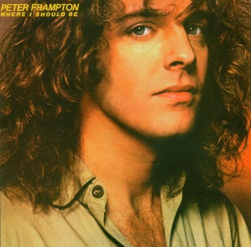 Peter Frampton I Can't Stand It No More profile image