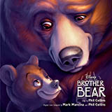 Phil Collins No Way Out (from Brother Bear) Sheet Music and PDF music score - SKU 25603
