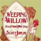 Scott Joplin Weeping Willow Rag Sheet Music and PDF music score - SKU 103950