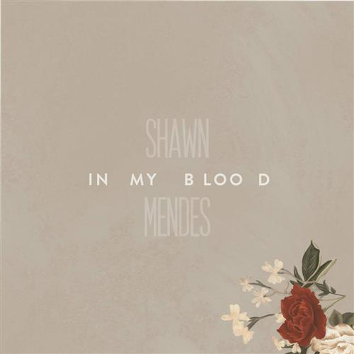 Shawn Mendes, In My Blood, Easy Guitar Tab