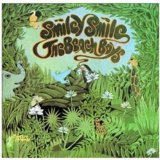 The Beach Boys Good Vibrations Sheet Music and PDF music score - SKU 185312