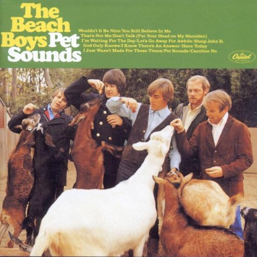 The Beach Boys Let's Go Away For A While profile image
