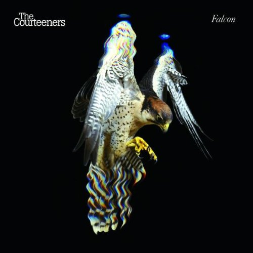 The Courteeners, You Overdid It Doll, Piano, Vocal & Guitar (Right-Hand Melody)